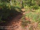 311_Ai_General_Track_20141121_IMG_6903.jpg